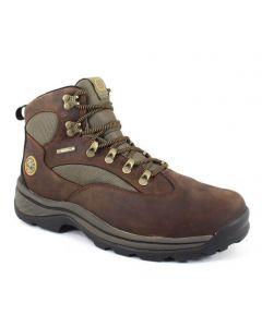 Timberland Men's Chocorua Trail 2.0 Mid GTX Dark Brown