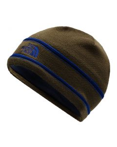 The North Face Logo Beanie Beech Green Flag Blue